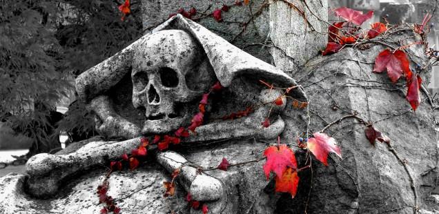 Tombstone skull